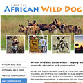 Save the African Wild Dog